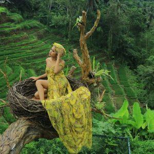aloha-ubud-swing-gallery- (2)