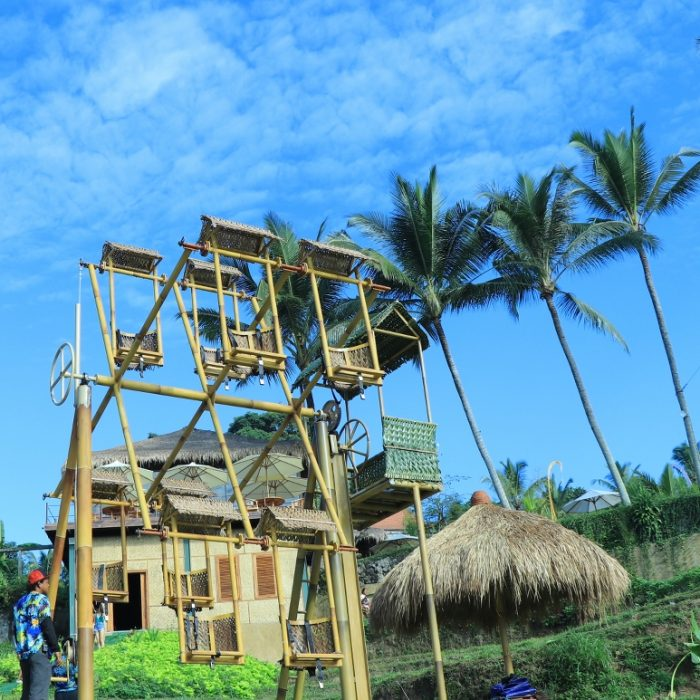 aloha ubud swing roler coster